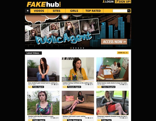Fake Hub passwords